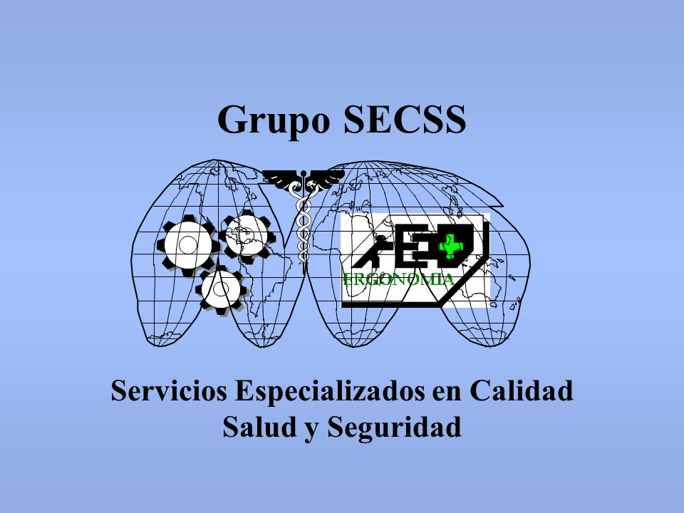 SERVICIOS ESPECIALIZADOS EN CALIDAD SALUD Y SEGURIDAD PRESENTACION.