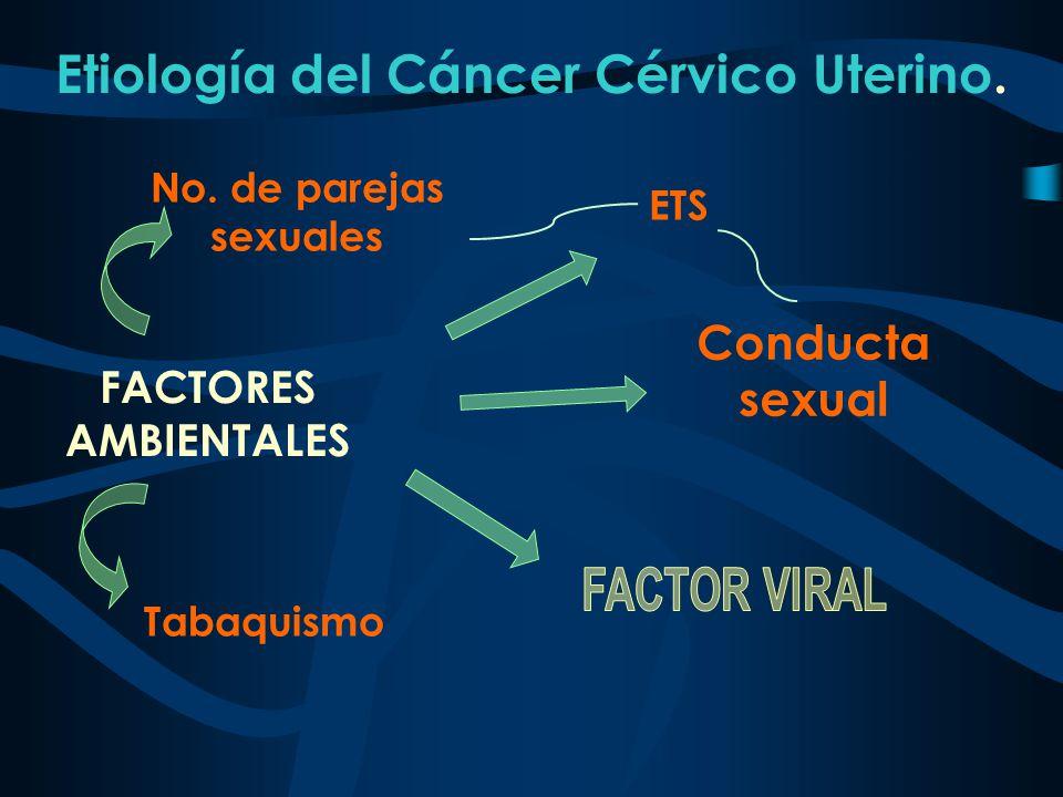 No. de parejas sexuales Etiología del Cáncer Cérvico Uterino. FACTORES AMBIENTALES ETS Conducta sexual Tabaquismo