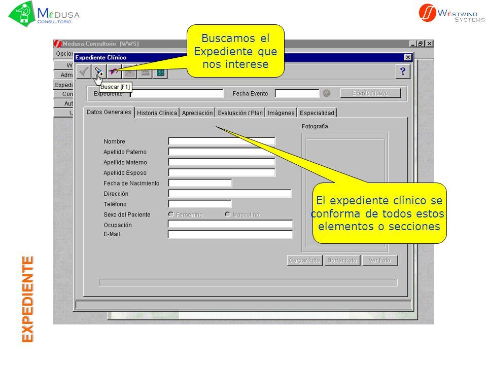 EXPEDIENTE Seleccionamos de la lista el Expediente Al presionar el botón indicado en la página anterior se despliega la lista de expedientes Presionando este botón se puede realizar una búsqueda específica