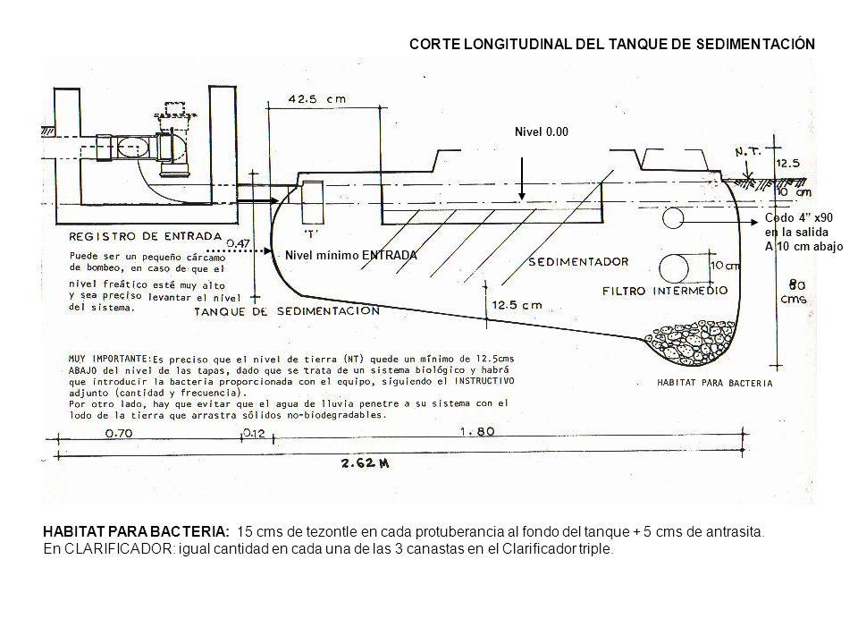 HABITAT PARA BACTERIA: 15 cms de tezontle en cada protuberancia al fondo del tanque + 5 cms de antrasita. En CLARIFICADOR: igual cantidad en cada una