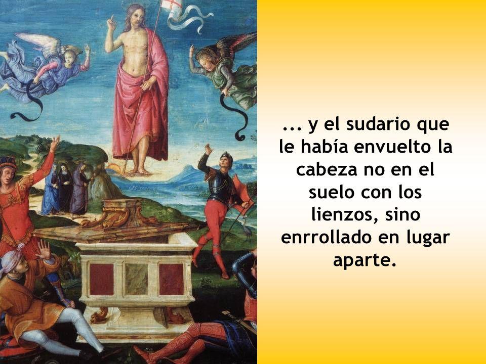 Después llegó Simón Pedro, que le seguía y entró en el sepulcro. Observó los lienzos en el suelo...