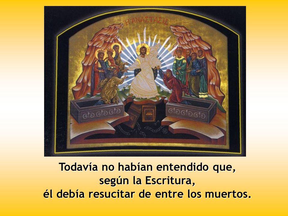 Entonces entró el otro discípulo, el que había llegado primero al sepulcro; vio y creyó.