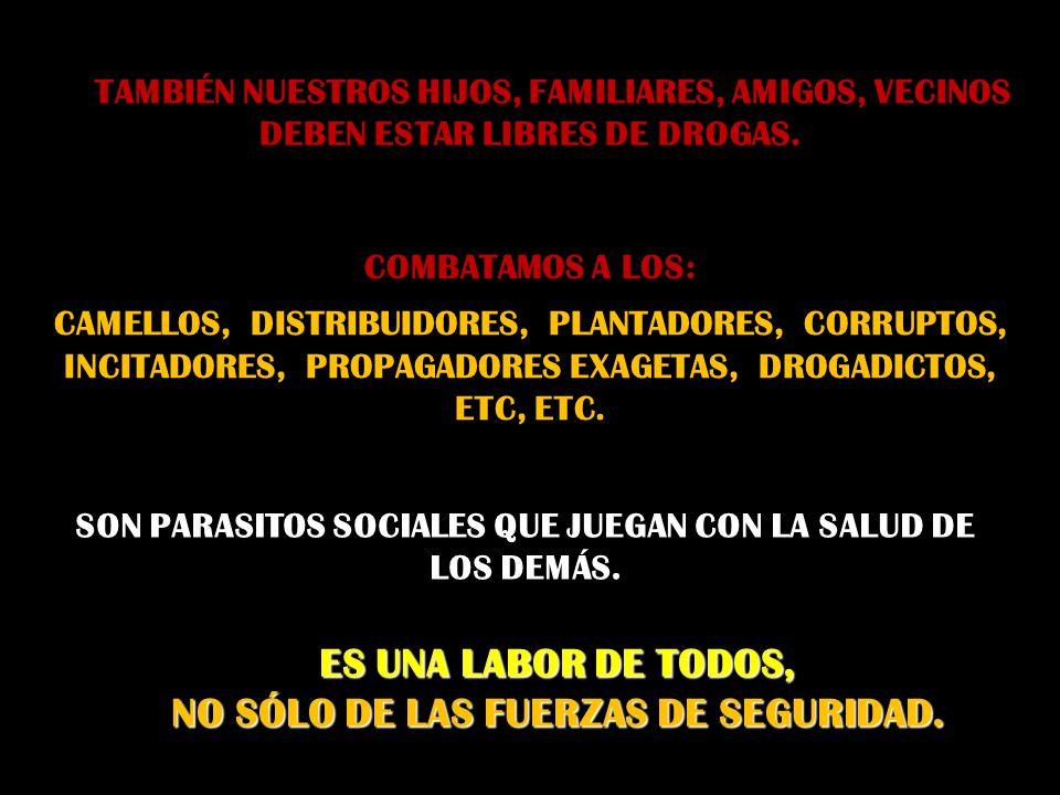 DIOS NOS REGALA DONES Y ES NUESTRO DEBER CUIDARLOS, MULTIPLICARLOS Y MANTENERLOS EN SERVICIO. LAS DROGAS: ¡SI DEGRADAN!, ¡SI DESTRUYEN!, ¡SI MATAN!. H