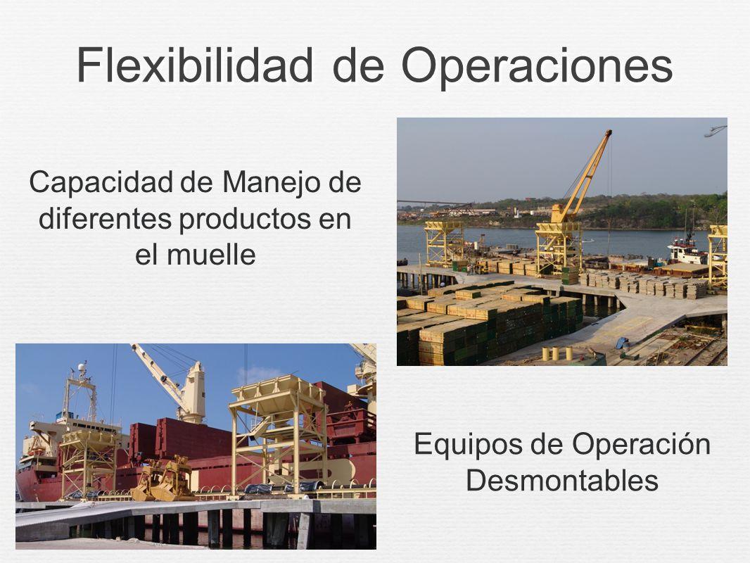 Infraestructura Adecuada Espuela de FFCC (TFM)Seguridad y Vigilancia