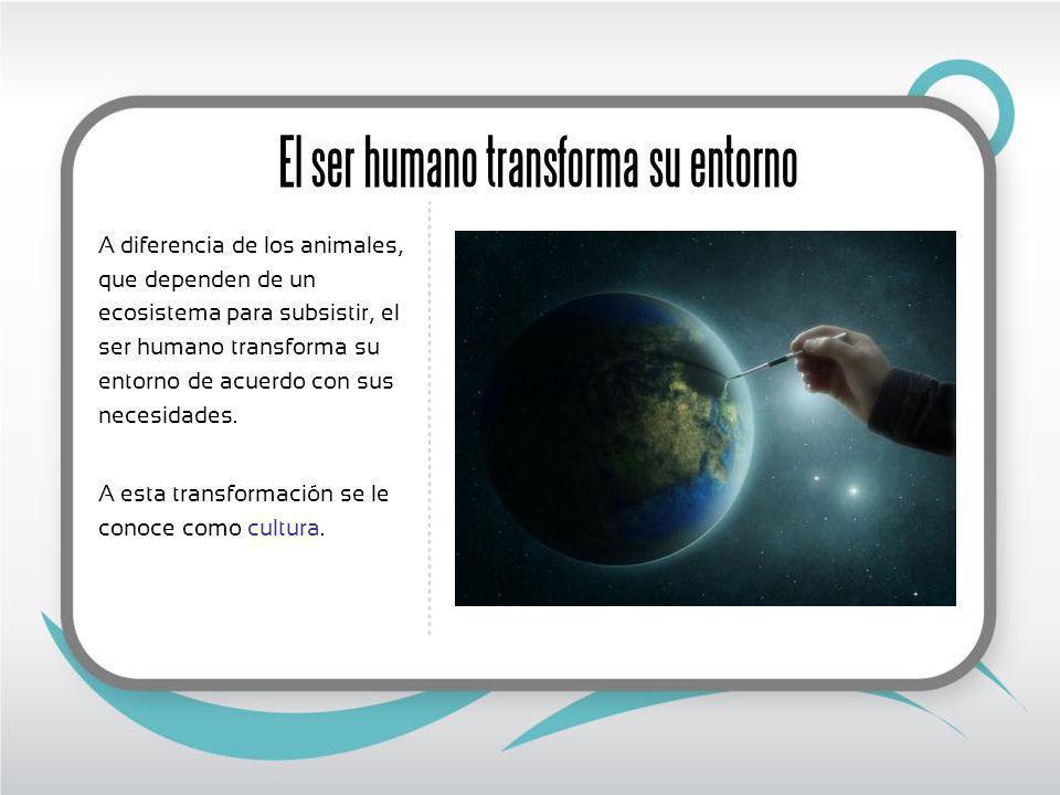 El ser humano transforma su entorno A diferencia de los animales, que dependen de un ecosistema para subsistir, el ser humano transforma su entorno de acuerdo con sus necesidades.