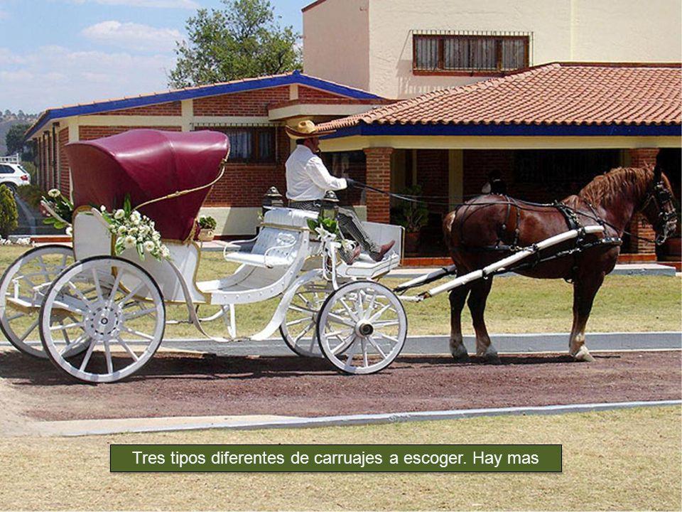 Restaurante San Pedro y www.carruajes.com.mx, presentan a Ud.
