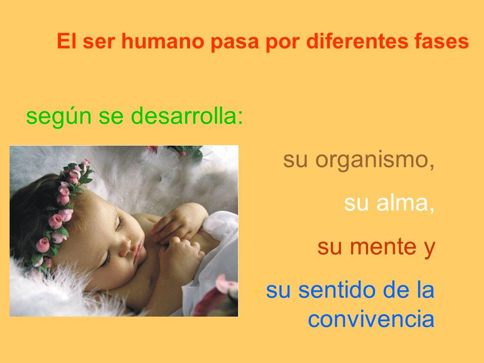 El ser humano pasa por diferentes fases según se desarrolla: su organismo, su alma, su mente y - su sentido de la convivencia