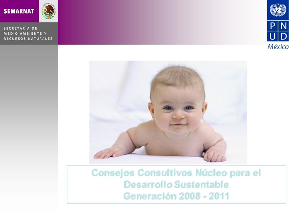 Consejos Consultivos Núcleo para el Desarrollo Sustentable Generación 2008 - 2011 Consejos Consultivos Núcleo para el Desarrollo Sustentable Generación 2008 - 2011