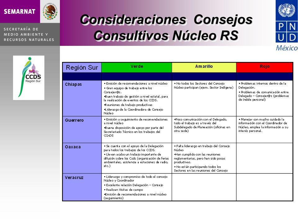 Consideraciones Consejos Consultivos Núcleo RS