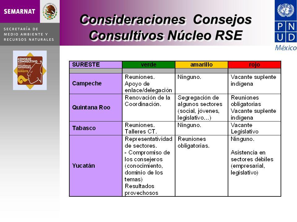 Consideraciones Consejos Consultivos Núcleo RSE