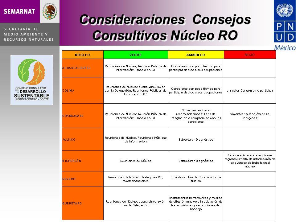 Consideraciones Consejos Consultivos Núcleo RO