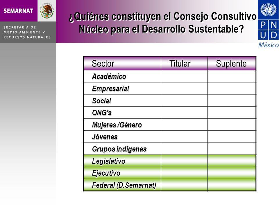 ¿Quiénes constituyen el Consejo Consultivo Núcleo para el Desarrollo Sustentable.