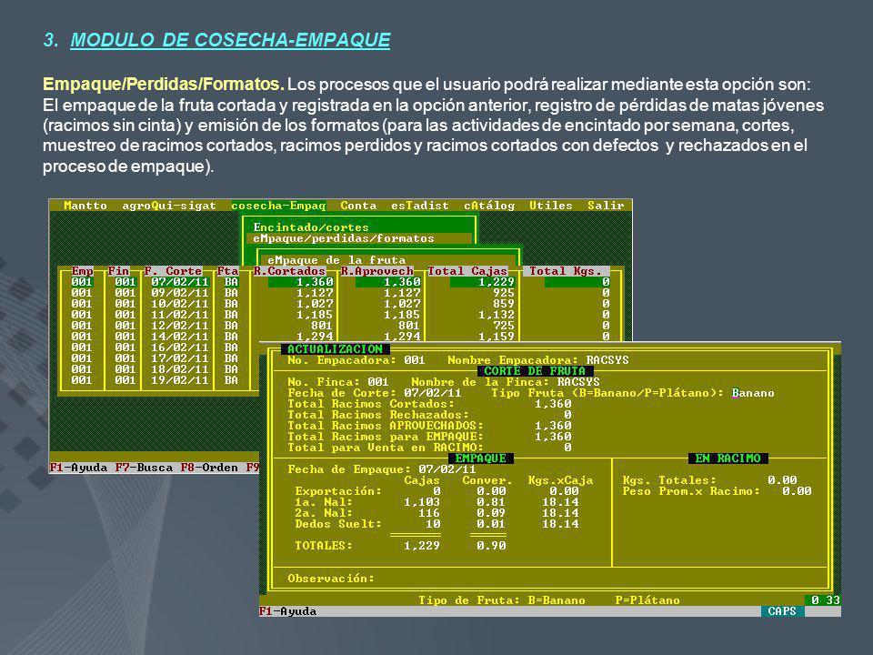 3. MODULO DE COSECHA-EMPAQUE Empaque/Perdidas/Formatos. Los procesos que el usuario podrá realizar mediante esta opción son: El empaque de la fruta co