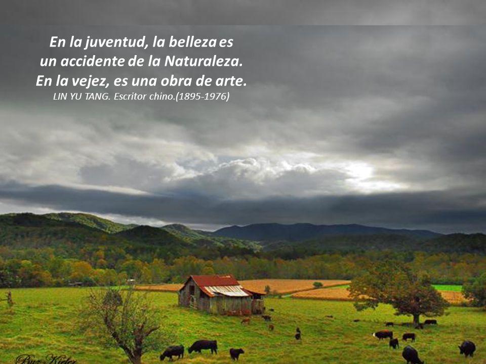 En la juventud, la belleza es un accidente de la Naturaleza.