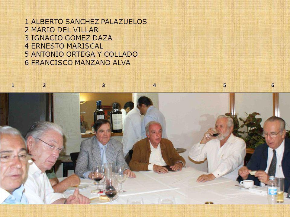 152463 1 ALBERTO SANCHEZ PALAZUELOS 2 MARIO DEL VILLAR 3 IGNACIO GOMEZ DAZA 4 ERNESTO MARISCAL 5 ANTONIO ORTEGA Y COLLADO 6 FRANCISCO MANZANO ALVA