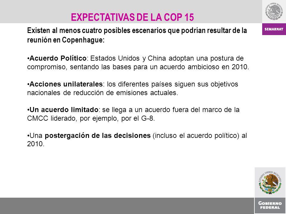 EXPECTATIVAS DE LA COP 15 Existen al menos cuatro posibles escenarios que podrían resultar de la reunión en Copenhague: Acuerdo Político: Estados Unid