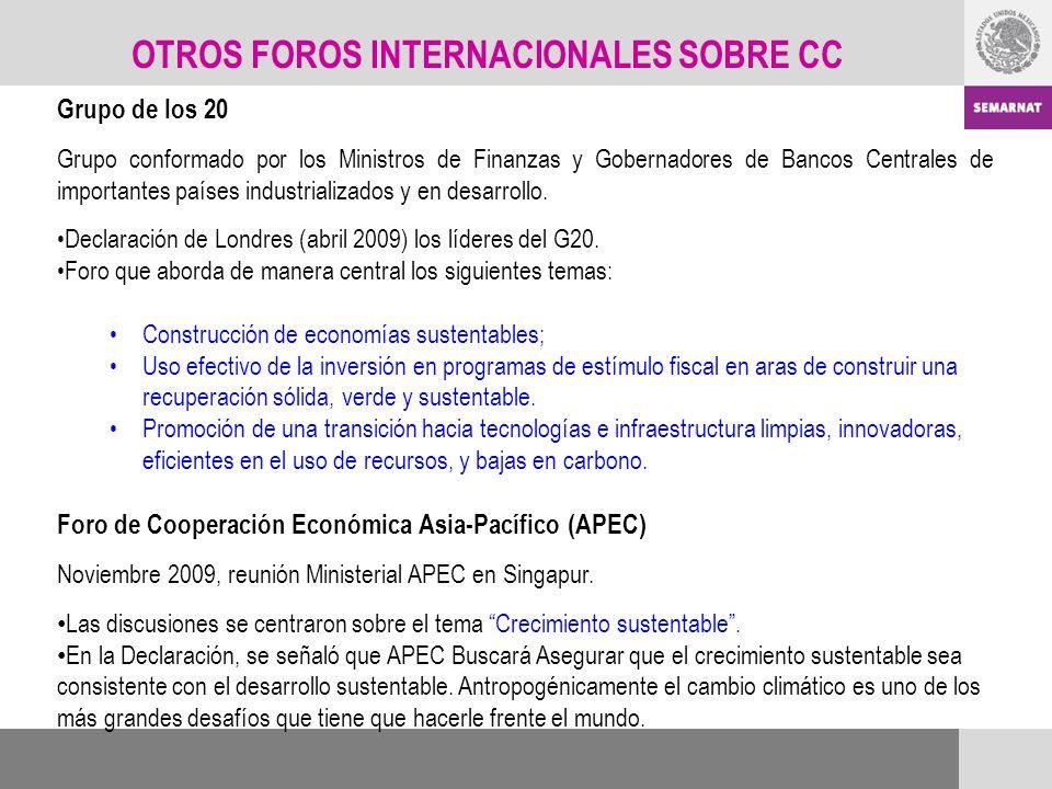 Grupo de los 20 Grupo conformado por los Ministros de Finanzas y Gobernadores de Bancos Centrales de importantes países industrializados y en desarrol