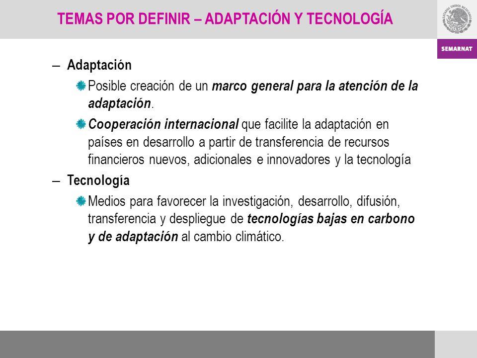 – Adaptación Posible creación de un marco general para la atención de la adaptación. Cooperación internacional que facilite la adaptación en países en
