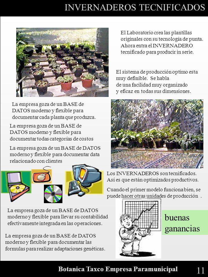 11 Botanica Taxco Empresa Paramunicipal INVERNADEROS TECNIFICADOS El Laboratorio crea las plantillas originales con su tecnología de punta. Ahora entr