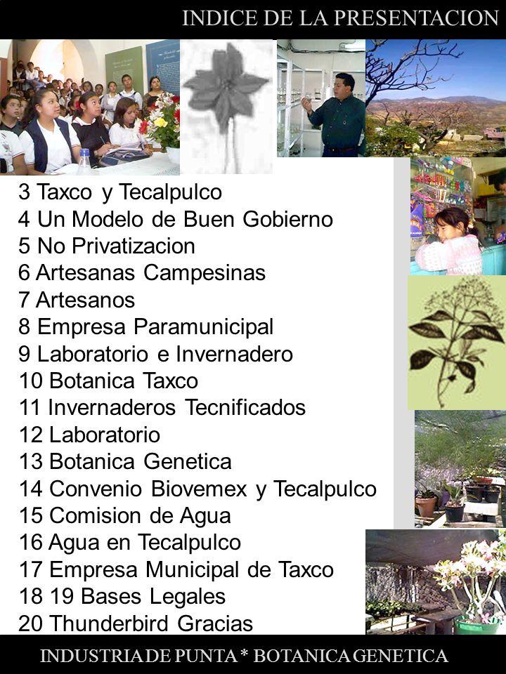 INDICE DE LA PRESENTACION 3 Taxco y Tecalpulco 4 Un Modelo de Buen Gobierno 5 No Privatizacion 6 Artesanas Campesinas 7 Artesanos 8 Empresa Paramunici