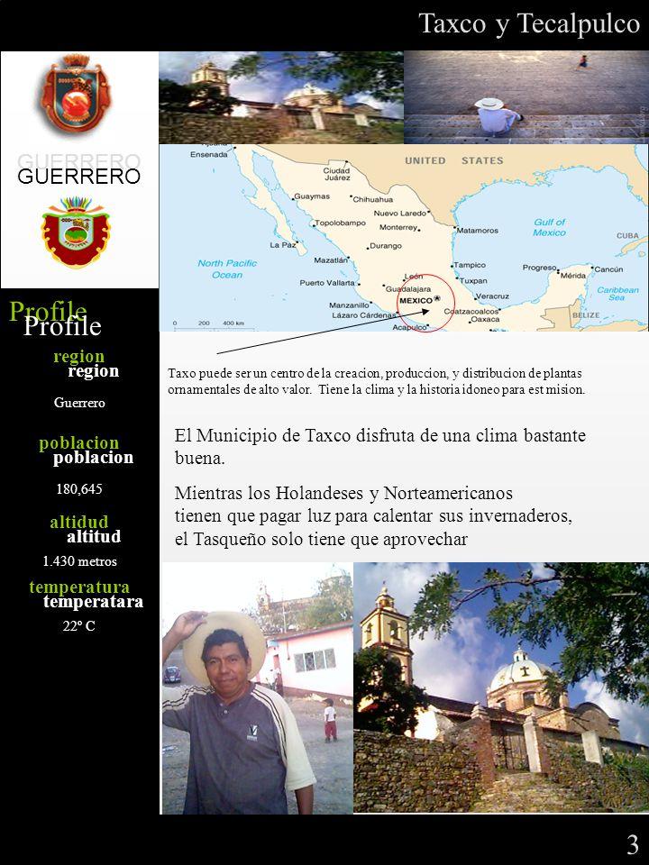 Profile region poblacion altidud temperatura Guerrero 180,645 1.430 metros 22º C GUERRERO Profile region poblacion altitud temperatara Taxo puede ser