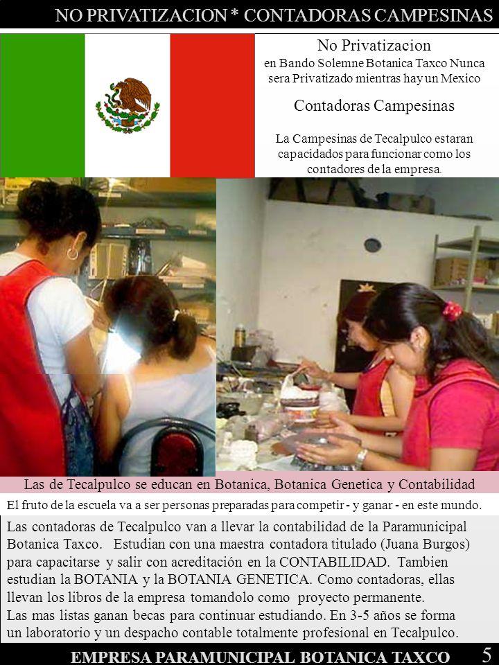 NO PRIVATIZACION * CONTADORAS CAMPESINAS 5 EMPRESA PARAMUNICIPAL BOTANICA TAXCO No Privatizacion en Bando Solemne Botanica Taxco Nunca sera Privatizad
