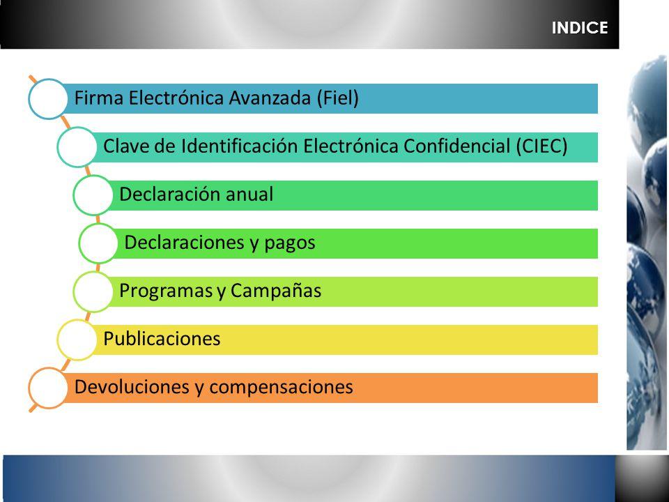 Firma Electrónica Avanzada (Fiel) Clave de Identificación Electrónica Confidencial (CIEC) Declaración anual Declaraciones y pagos Programas y Campañas
