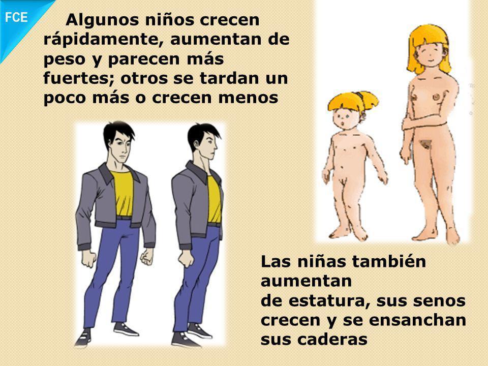 Los cambios son diferentes en hombres y mujeres y no ocurren todos al mismo tiempo. En su aparición influyen factores genéticos, ambientales y de nutr