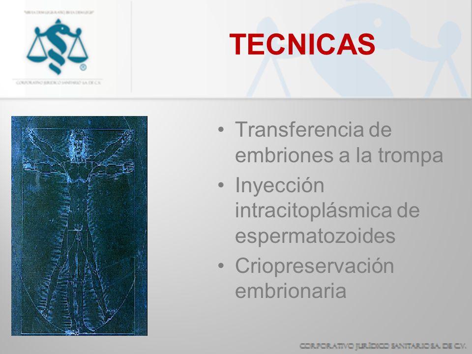 TECNICAS Transferencia de embriones a la trompa Inyección intracitoplásmica de espermatozoides Criopreservación embrionaria