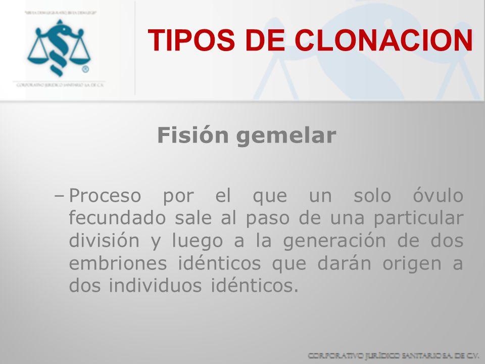 TIPOS DE CLONACION Fisión gemelar –Proceso por el que un solo óvulo fecundado sale al paso de una particular división y luego a la generación de dos e