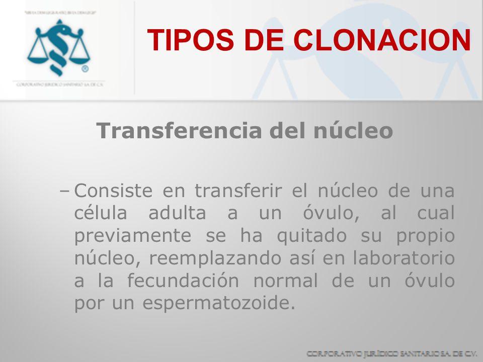 TIPOS DE CLONACION Transferencia del núcleo –Consiste en transferir el núcleo de una célula adulta a un óvulo, al cual previamente se ha quitado su pr