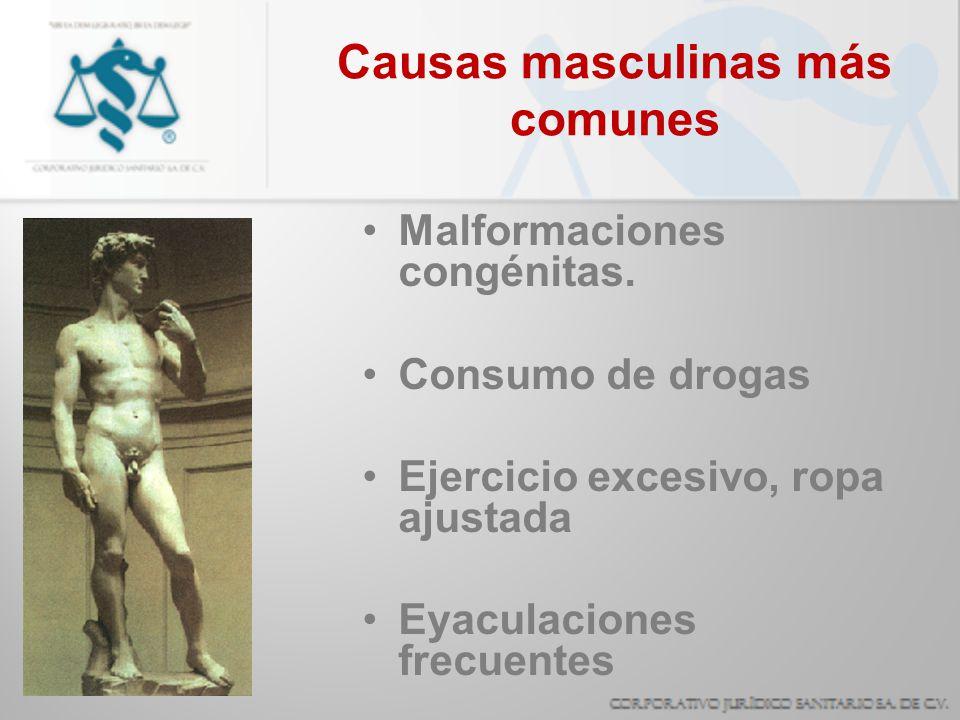 Causas masculinas más comunes Malformaciones congénitas. Consumo de drogas Ejercicio excesivo, ropa ajustada Eyaculaciones frecuentes