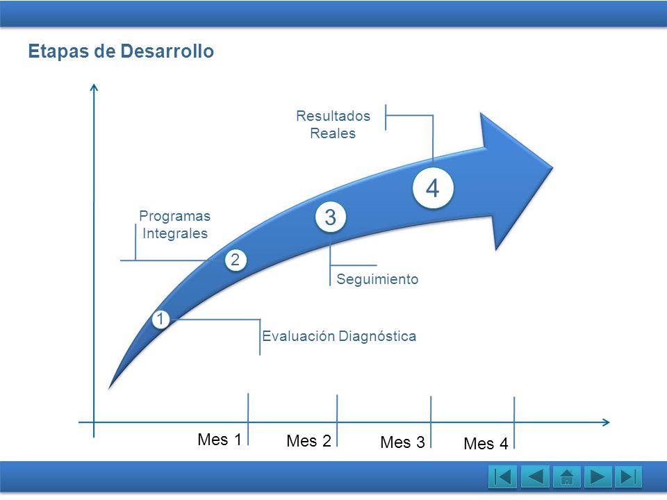 Etapas de Desarrollo Evaluación Evaluación Diagnóstica Programas Integrales Seguimiento Resultados Reales Mes 1 Mes 2 Mes 3 Mes 4 1 4 2 3
