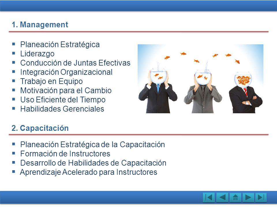 Planeación Estratégica Liderazgo Conducción de Juntas Efectivas Integración Organizacional Trabajo en Equipo Motivación para el Cambio Uso Eficiente d