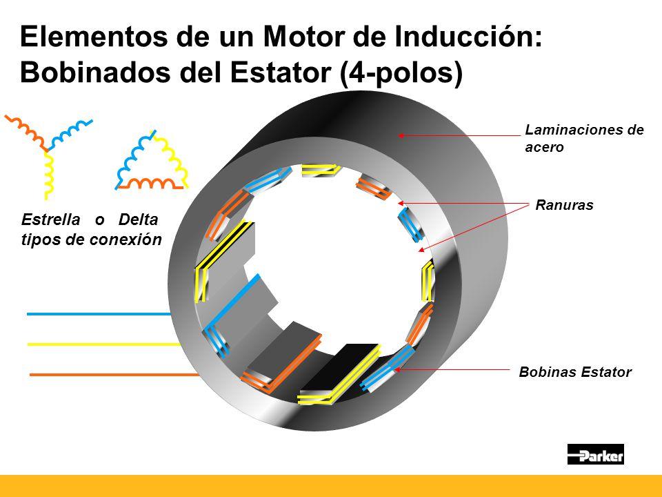 Elementos de un Motor de Inducción: Bobinados del Estator (4-polos) Laminaciones de acero Bobinas Estator Ranuras Estrella o Delta tipos de conexión