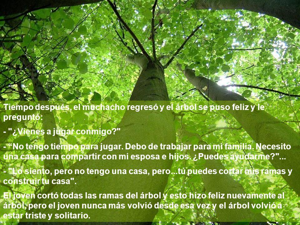 Tiempo después, el muchacho regresó y el árbol se puso feliz y le preguntó: -