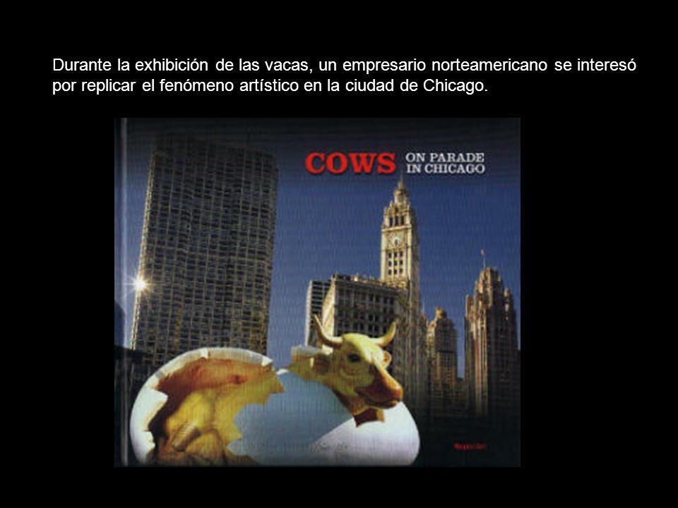 Durante la exhibición de las vacas, un empresario norteamericano se interesó por replicar el fenómeno artístico en la ciudad de Chicago.