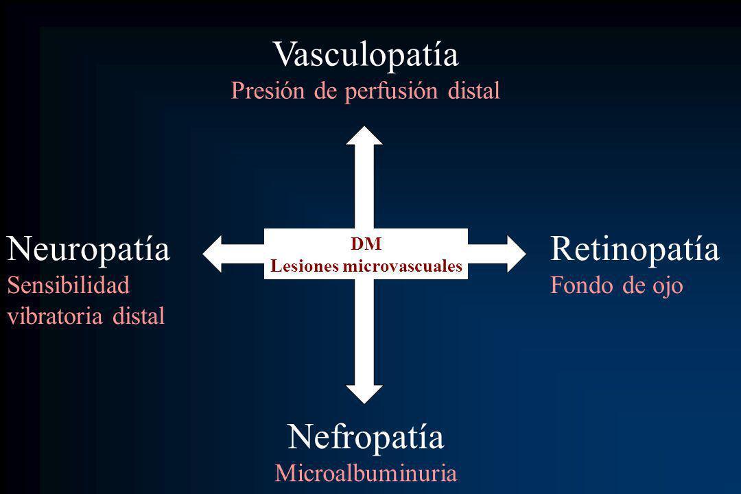 Vasculopatía Presión de perfusión distal Nefropatía Microalbuminuria Retinopatía Fondo de ojo Neuropatía Sensibilidad vibratoria distal DM Lesiones mi