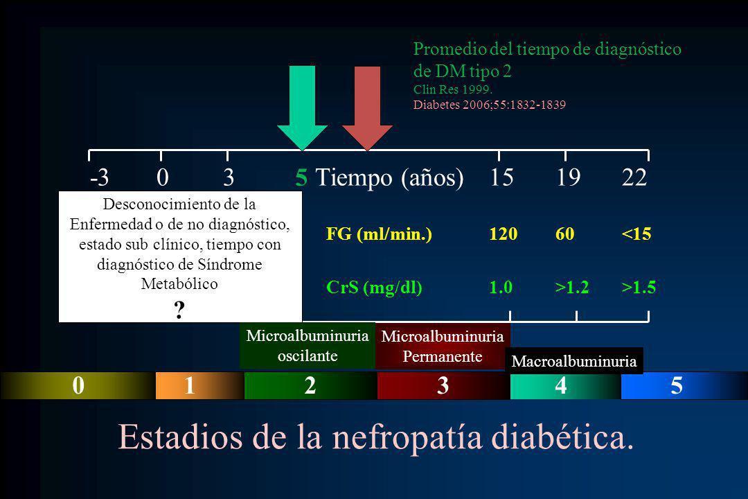 -303 Tiempo (años)151922 120150150 FG (ml/min.)12060<15 1.00.80.8 CrS (mg/dl)1.0>1.2>1.5 Microalbuminuria Permanente Estadios de la nefropatía diabéti