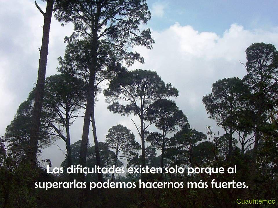 Cuauhtémoc Las dificultades existen solo porque al superarlas podemos hacernos más fuertes.