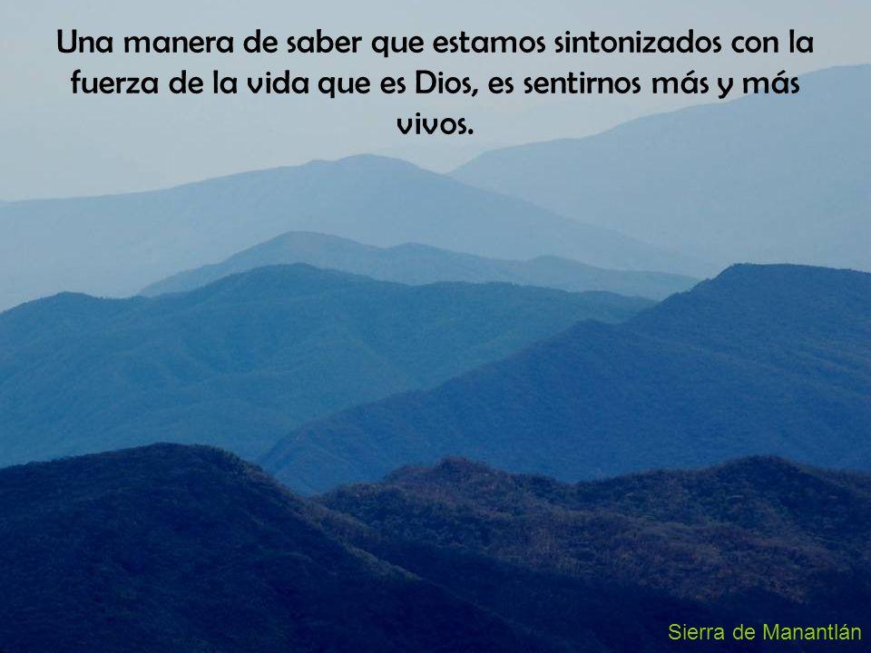 Sierra de Manantlán Una manera de saber que estamos sintonizados con la fuerza de la vida que es Dios, es sentirnos más y más vivos.