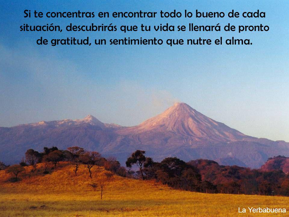 Si te concentras en encontrar todo lo bueno de cada situación, descubrirás que tu vida se llenará de pronto de gratitud, un sentimiento que nutre el a