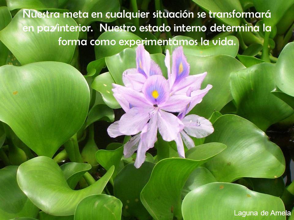 Nuestra meta en cualquier situación se transformará en paz interior. Nuestro estado interno determina la forma como experimentamos la vida. Laguna de