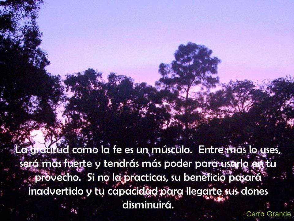 Cerro Grande La gratitud como la fe es un músculo. Entre mas lo uses, será mas fuerte y tendrás más poder para usarlo en tu provecho. Si no la practic