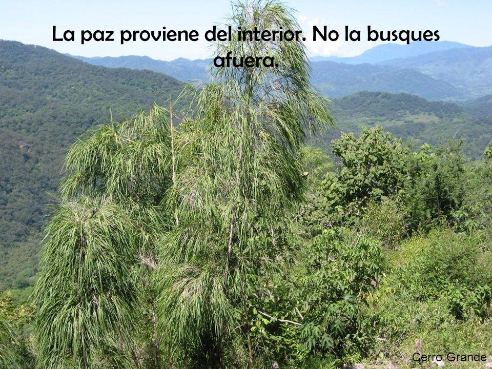Cerro Grande La paz proviene del interior. No la busques afuera.
