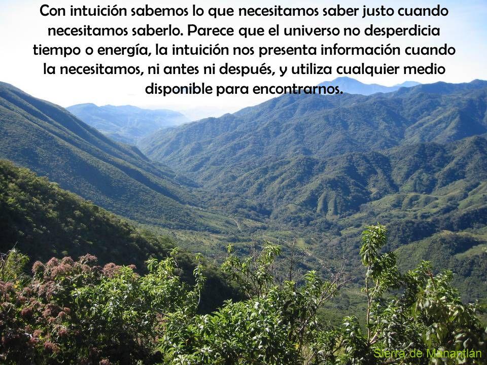 Sierra de Manantlán Con intuición sabemos lo que necesitamos saber justo cuando necesitamos saberlo.