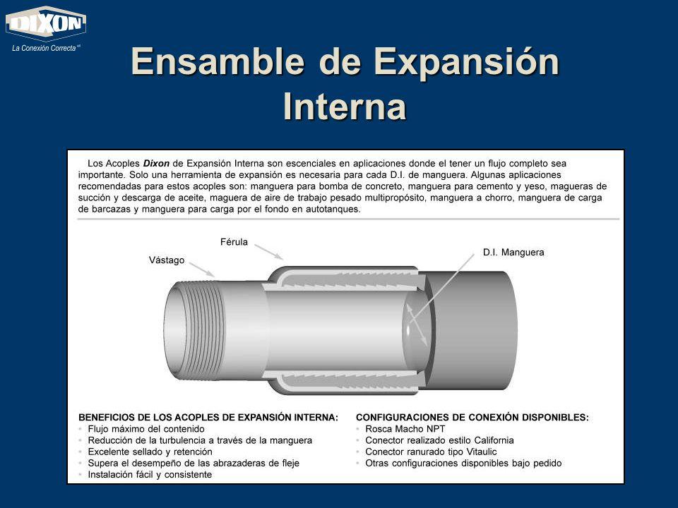 Ensamble de Expansión Interna