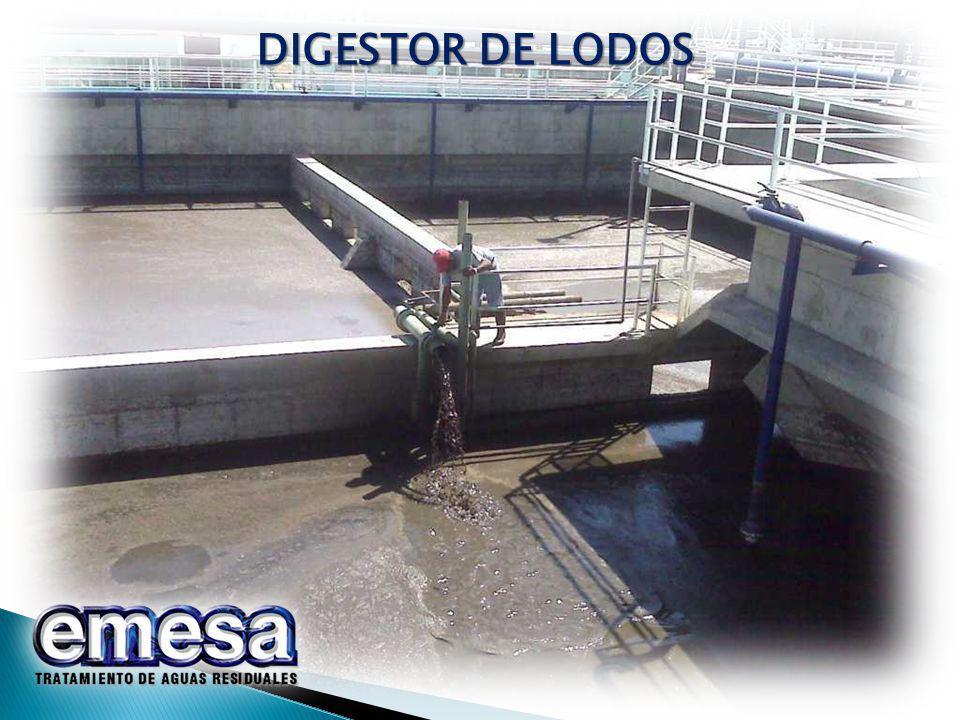 DIGESTOR DE LODOS