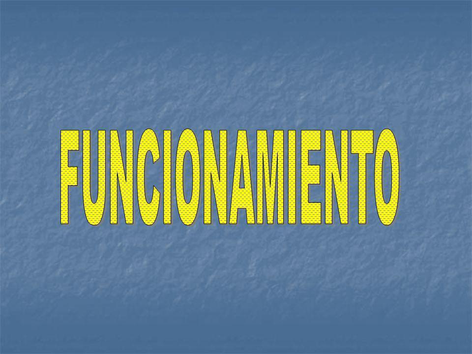 EL RECORRIDO ES LA VISITA PROGRAMADA A LOS EDIFICIOS, INSTALACIONES Y EQUIPOS DEL CENTRO DE TRABAJO, CON EL FIN DE OBSERVAR LAS CONDICIONES DE SEGURIDAD E HIGIENE QUE PREVALEZCAN EN LOS MISMOS Y BUSCAR LAS POSIBLES CAUSAS DE RIESGOS LAS COMISIONES DEBEN REALIZAR, POR LO MENOS, UN RECORRIDO MENSUAL