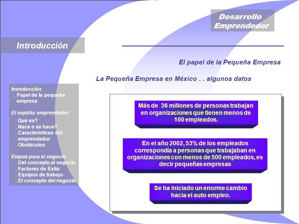 Desarrollo Emprendedor La Pequeña Empresa en México..